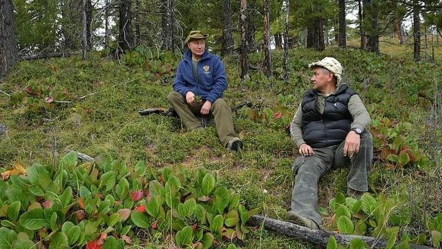 Putin und Schoigu sitzen auf dem Waldboden.