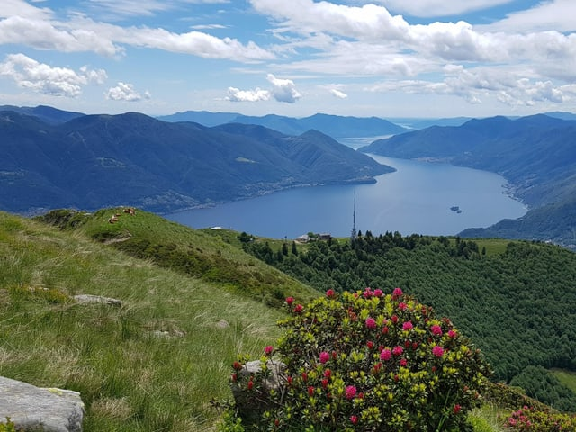 Tolle Aussicht über den Lago Maggiore.