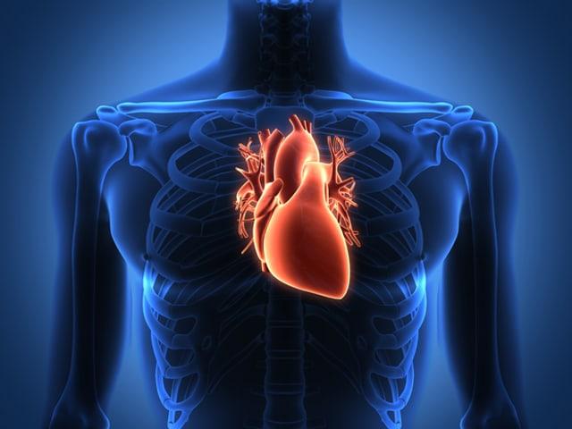 Röntgenbild mit Fokus auf dem Herzen.