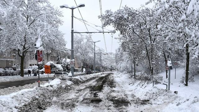 Lingia da tram a Turitg.