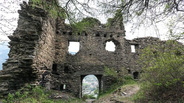 Eine Burg, die mit Gestrüpp überdeckt ist.