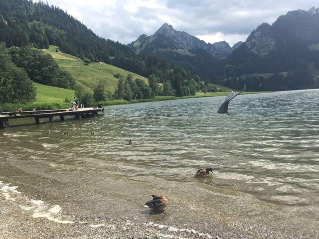 Blick über einen See, dahinter hohe Berge.