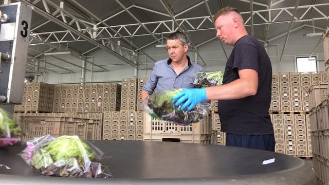 Zwei Männer stehen bei Abpackanlagen, im Vordergrund sind zwei Salatköpfe, im Hintergrund leere, gestapelte Kisten.