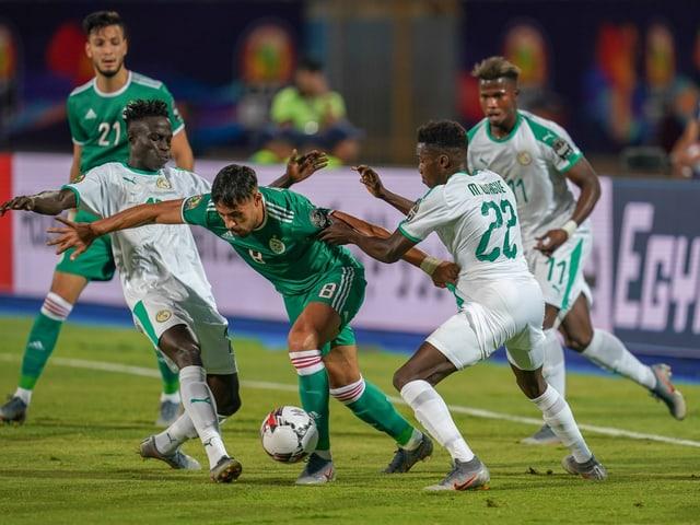 Algerien schlägt Senegal 1:0 - «Wüstenfüchse» nehmen Kurs auf den Achtelfinal