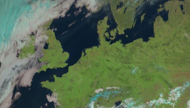 Sichtbarer Kanal vom Satellit, 11 Uhr. Zwischen Schweden und Süddeutschland sowie vom Ärmelkanal bis zur Ukraine praktisch wolkenlos. Da fällt das Hochnebelfeld im Schweizer Mittelland direkt auf.