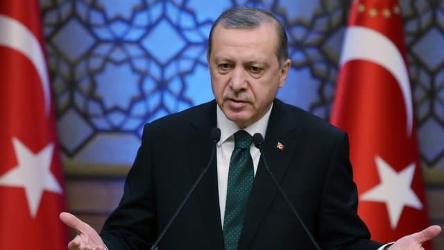Purtret dad Erdogan.