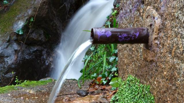 Quellwasser fliesst aus einer Brunnenröhre