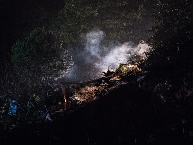 Baumstücke und Erde in einem abschüssigen Waldstück, teilweise von einem Scheinwerfer erhellt