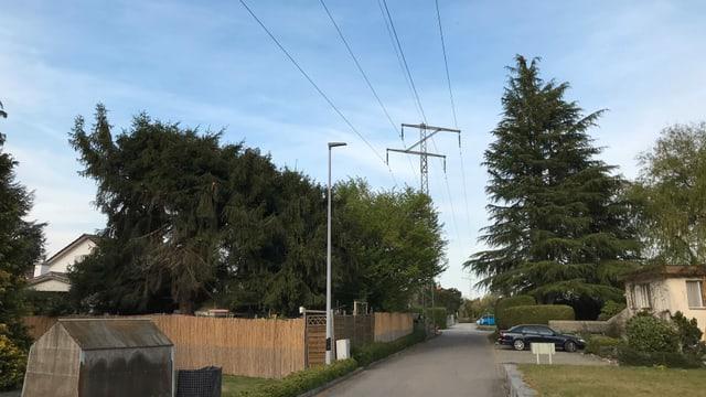 Stromleitung zwischen Häusern und neben Strasse