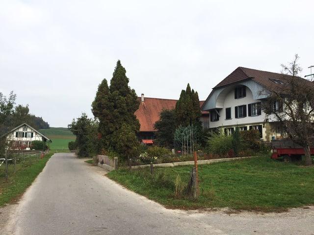 Bauernhäuser an Strasse.