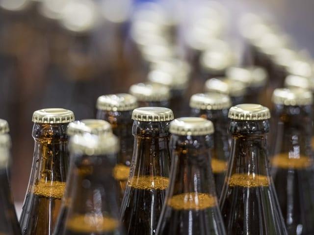 Volle Bierflaschen laufen über das Laufband einer Brauerei.