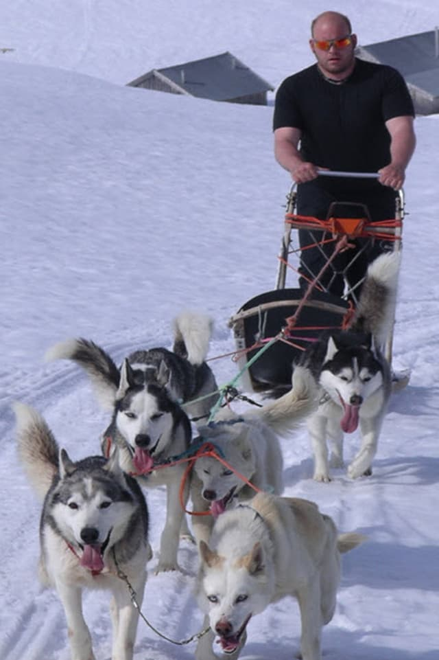 Florian Hofmann besitzt selbst 3 Schlittenhunde und steht in seiner Freizeit gerne auf dem Schlitten.