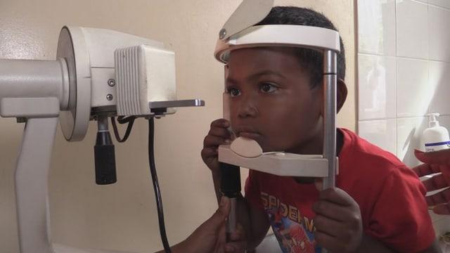 Video «Gracy wird nicht blind werden» abspielen