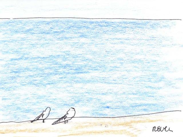 Zeichnung zweier Möven, die nebeneinander am Strand stehen.