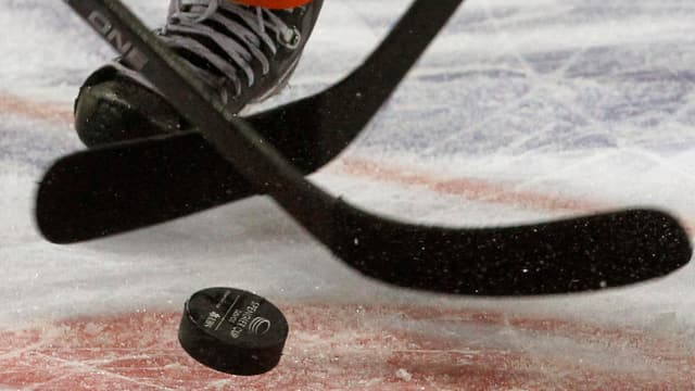 Puck da hockey sin glatsch e dus pals da hockey
