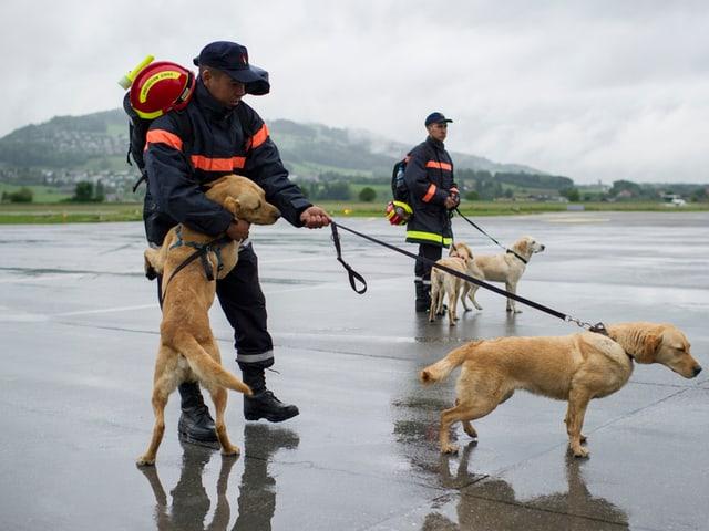 Auch Rettungshunde waren mit an Bord.