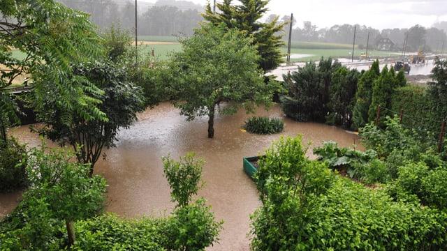 Überschwemmter Garten in Neuenegg
