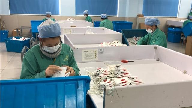 Personen in grüner Kleidung und mit Gesichtsmasken bei der Arbeit.