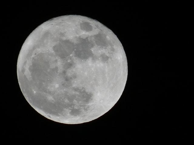Schwarze Nacht. Als grosse Kugel der Vollmond in hellgrau. Darauf sind etwas dunklere Krater zu sehen.