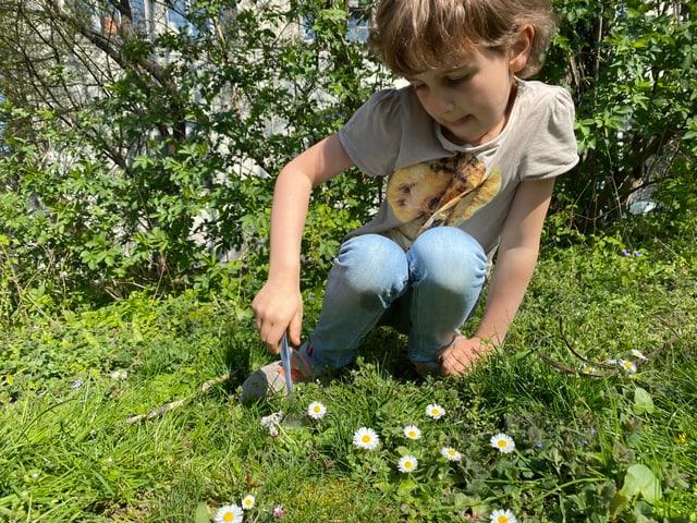 Mädchen sticht Blume aus.