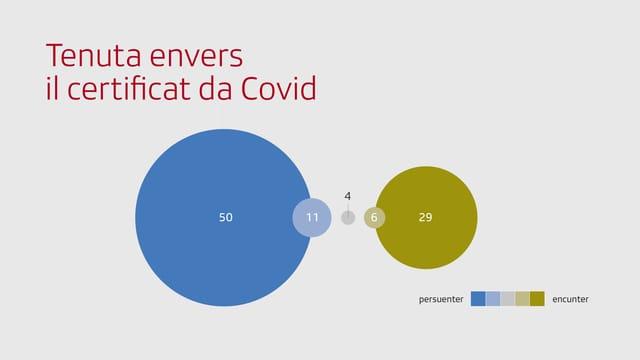 Grafica: Tenuta envers il certificat da Covid.