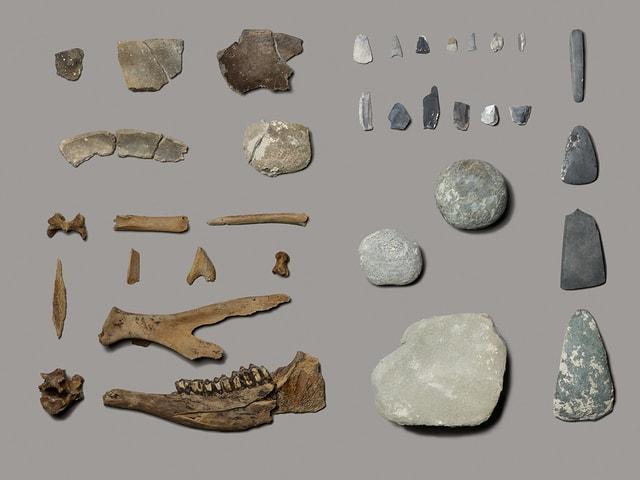 Verschiedene Fundstücke aus Tierknochen und Stein liegen auf grauem Untergrund.