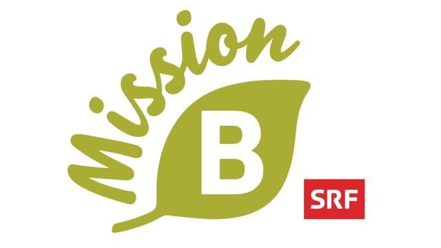 Mission B