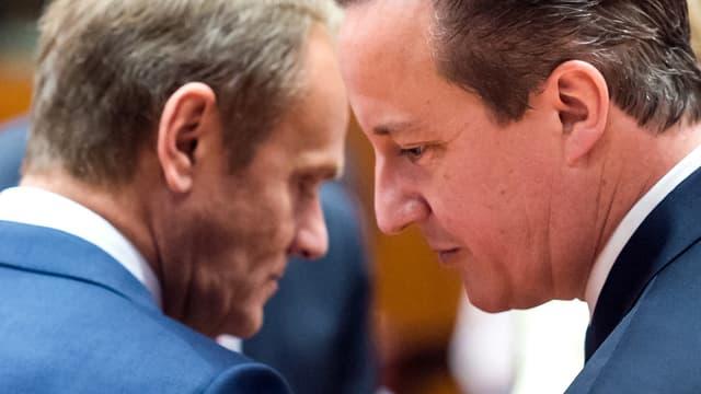 EU-Ratspräsident Donald Tusk und der britische Premier Cameron im Gespräch.