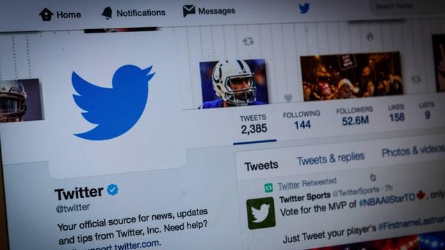 Ein Computerbildschirm mit dem Profil von Twitter