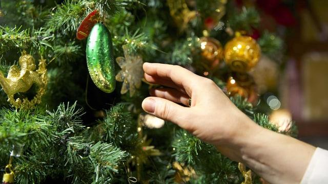 Eine Hand greift nach dem Essiggurken-Weihnachtsschmuck auf dem Christbaum.