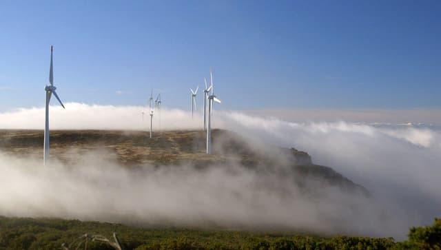 Video «Inseln der Zukunft: Madeira (3/5)» abspielen