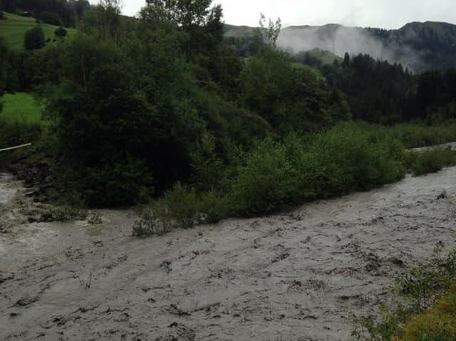 Im Vordergrund ist der braune Fluss zu sehen, welcher zum Teil über die Ufer tritt. Dahinter befinden sich Büsche und Bäume zum Teil im Wasser.