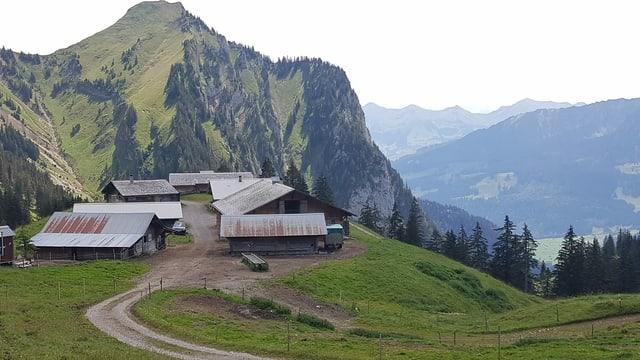 Häuser und Ställe auf einer Alp.