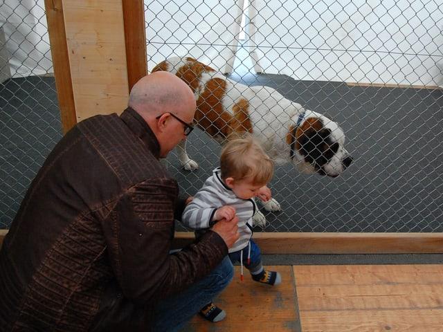 Mann kniet neben Kleinkind vor Hundegehege.