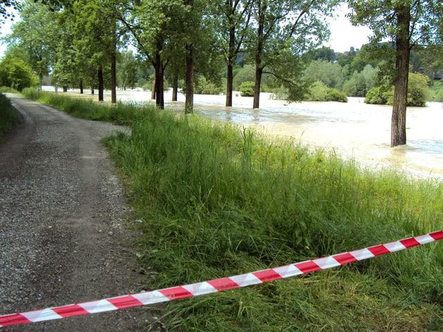 Bäume stehen im Wasser. Daneben ein Spazierweg abgesperrt.