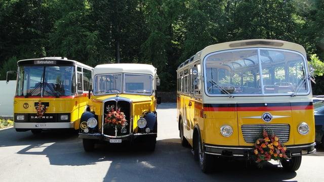 Drei alte Postautos der Marke Saurer.