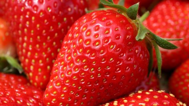 Erdbeeren, Nahhaufnahme
