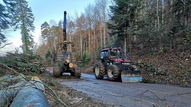 Traktoren im Wald