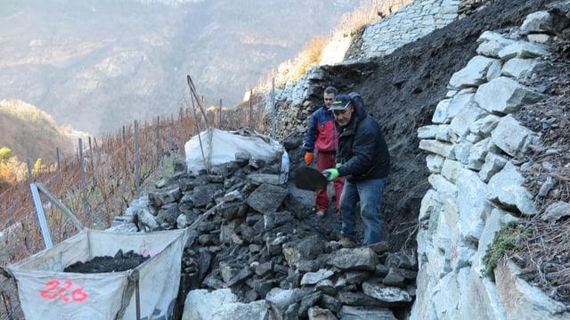 Bauarbeiter arbeiten an Trockensteinmauer.
