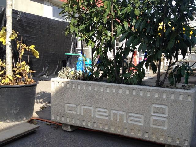 Eingang Cinema 8