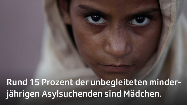 Quelle: UNHCR