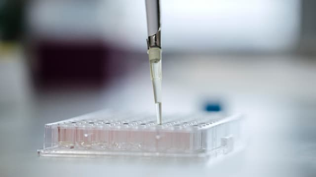 Forscher füllt mit eine Flüssigkeit in Röhrchen ab.