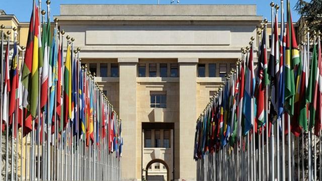 Die Strasse zum Haupteingang ist mit den Flaggen der Uno-Staaten gesäumt.