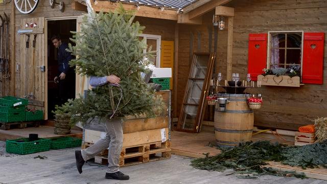 Mann trägt Weihnachtsbaum