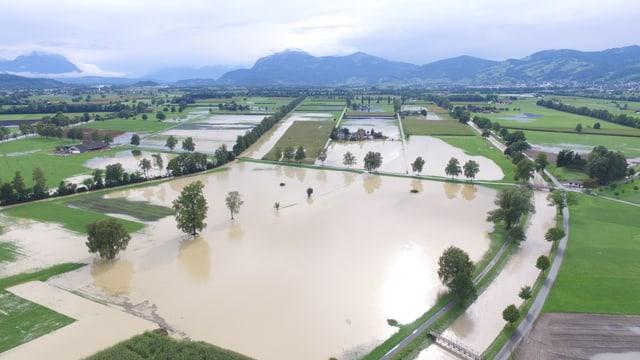 Überschwemmtes St. Galler Rheintal bei Balgach.