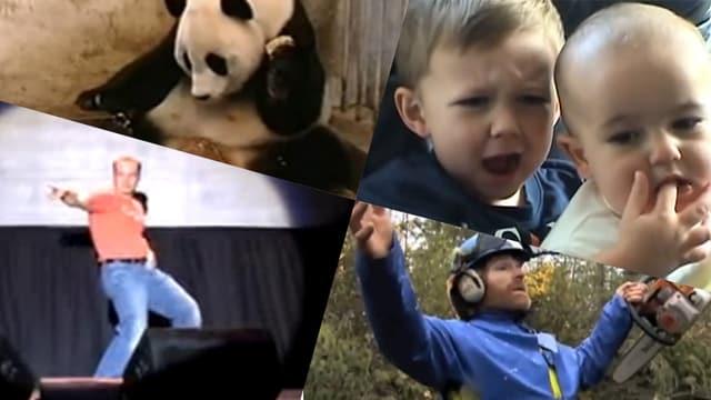 Vier Standbilder von Youtube-Videos