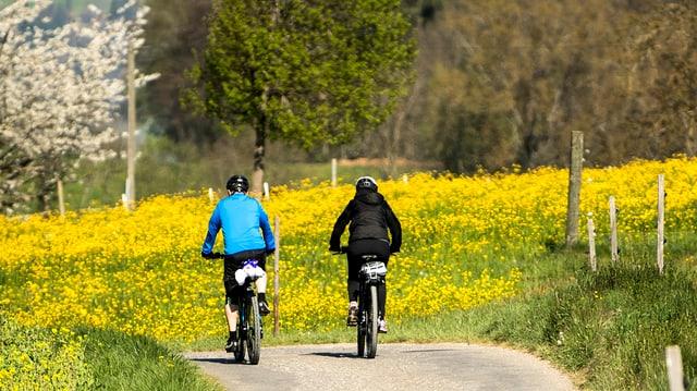 Zwei Radfahrer auf Kiesstrasse