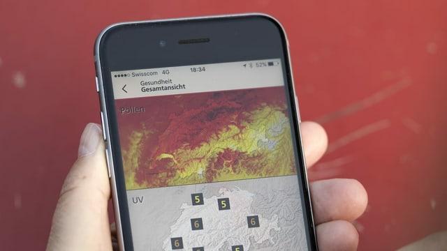 Auf einem Smartphone ist eine Pollen-App geöffnet