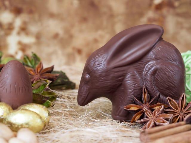 Schokoladen Bilby