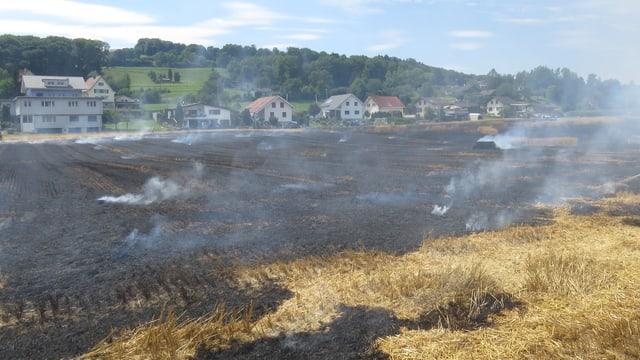 Rauch über verbrannter Erde vor Siedlung.